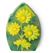 web_camomile_soap_mothers_day_spring_2018